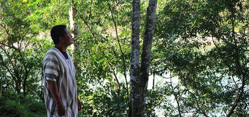 AIDESEP: Solicitan implementación de medidas de protección en salvaguarda de los derechos de los defensores de la Amazonía