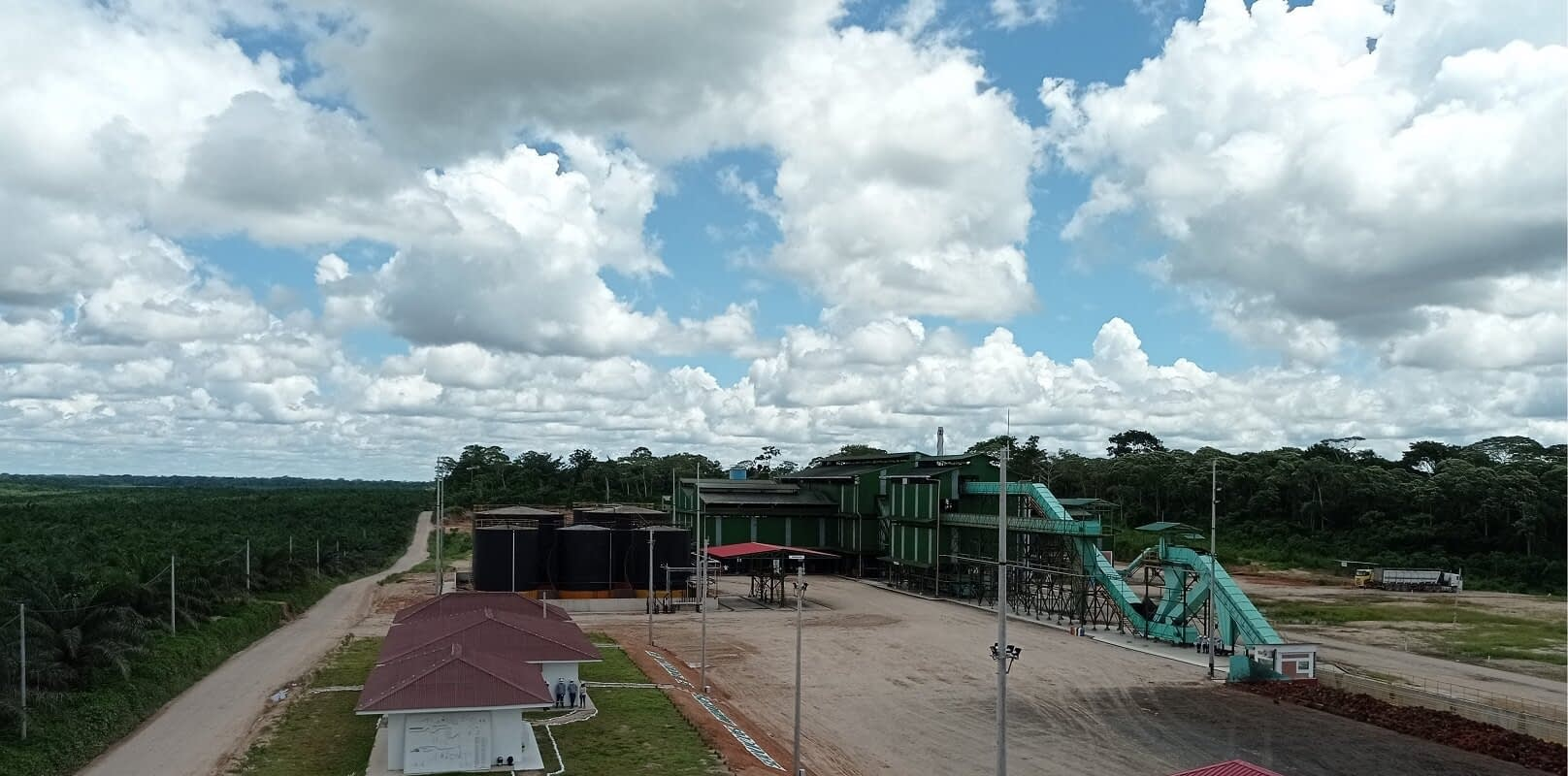 Los nexos comerciales detrás del incremento del negocio de la palma aceitera en la Amazonía
