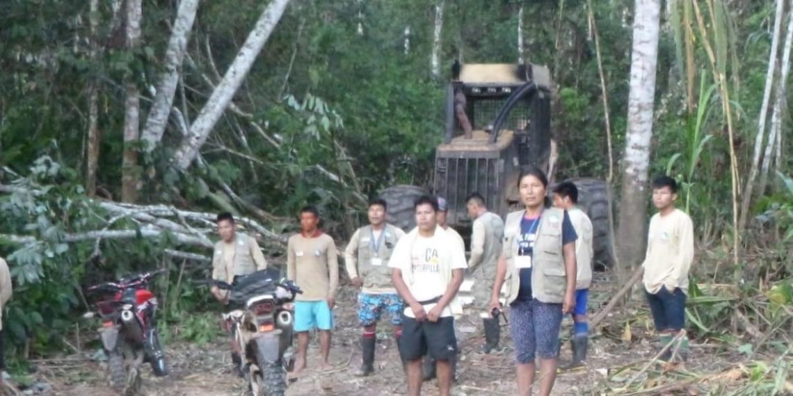 Ucayali: Acusan a madereras de invadir y contaminar a comunidad indígena