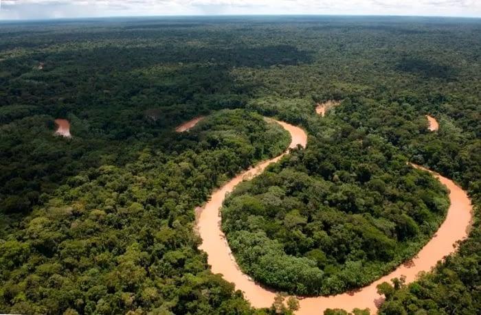 Minam: carretera Pucallpa-Cruzeiro do Sul afectaría un parque nacional y una reserva PIACI